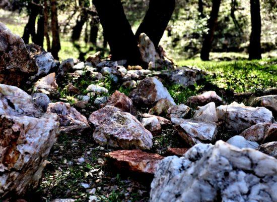 quartz landscape stones